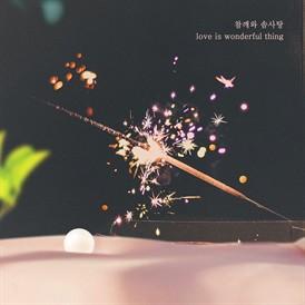 하나뿐인 내편 OST Part.32